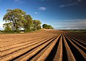 Picture Title - A view to be ploughed..