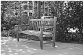 Picture Title - Bench B/W