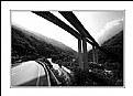 Bridge (7698)