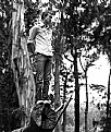 Picture Title - cameron on tree
