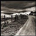 Picture Title - Landscape in Mono