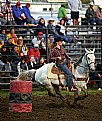 Picture Title - Barrel Racer #1