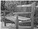 Picture Title - Life's a Bench