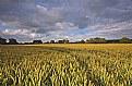 Picture Title - Cloud Shadows