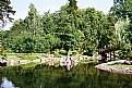 Picture Title - Japenese Garden-lake