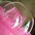 Picture Title - Bubble