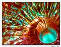 Picture Title - Abstract Glass
