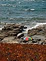 Picture Title - 6 corsica i bodri
