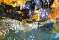 Picture Title - Stone
