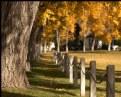 Picture Title - Autumn Journeys