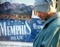 Picture Title - Memphis Blue