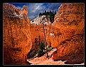 Picture Title -  Bryce Canyon