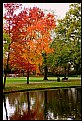 Picture Title - Rotterdam Park