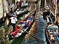 Picture Title - Venice II