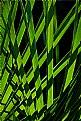 Green grating