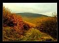 Picture Title - autumn sunset
