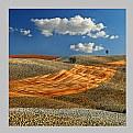 Picture Title - Sulla Volterrana