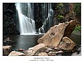 Picture Title - McKenzie Falls