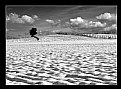 Picture Title - snow lonely