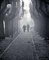 Picture Title - Innamorati