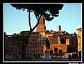 Picture Title - Roma - II