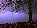 Picture Title - Fabulous lake...