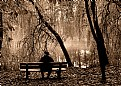 Picture Title - Where she went away?....