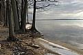 Picture Title - Winter ago