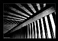 Picture Title - Lines