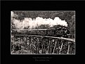 Picture Title - Puffing Billy