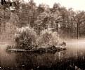 Picture Title - Sepia lake...II