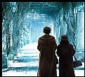 Picture Title - Winter walk