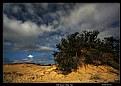Picture Title - Kill Devil Hills