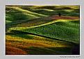 Picture Title - Minimal landscape