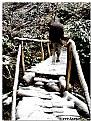 Picture Title - Bridge of life