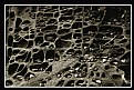 Picture Title - Emmenthal Rock