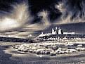 Picture Title - Dunstanburgh castle