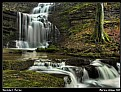Picture Title - Scaleber Force