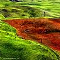 Picture Title - Minimal landscape # 2