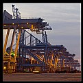 Picture Title - Delta Container Terminal II