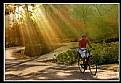 Picture Title - neverland biker(color ver)