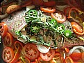 Picture Title - SNAPPER