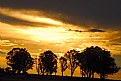 Picture Title - Sunset in the orange free state