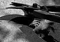 Picture Title - dark cutters