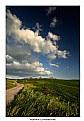Picture Title - Pomaia landscape
