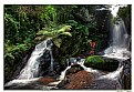 Picture Title - Waterfalls