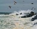 Picture Title - Rough Seas
