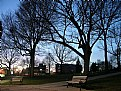 Picture Title - evening in the park