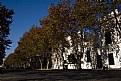 Picture Title - Calles de Colonia