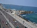 Picture Title - Alexandria in June